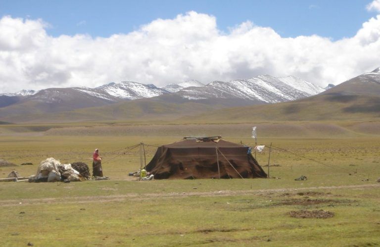 Nomaden in Tibet, Bedoeïnentent en uitleg herkomst stretchtent